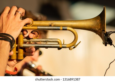 Trumpet. Close-up. Shows the musician's play on trumpet.