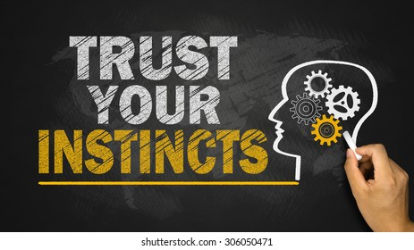 trust your instincts concept on chalkboard