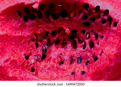 Trypophobia Images Stock Photos Vectors Shutterstock