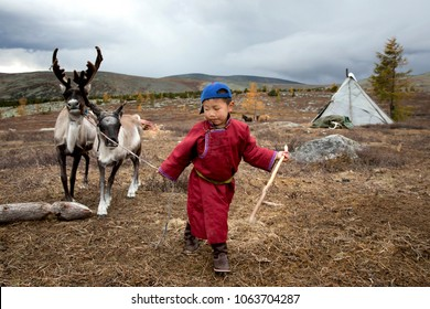 tsaatan boy, dressed in a traditional deel, with a reindeer in a taiga of northern Mongolia