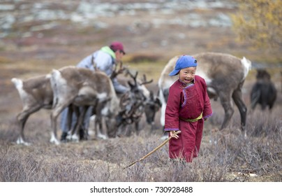 tsaatan boy in a landscape of northern mongolia with his father with reindeer at the background