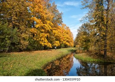 TSARSKOYE SELO, SAINT-PETERSBURG, RUSSIA – OCTOBER 8, 2018: Woman takes selfie in the autumn Alexander Park near The Ozerki Ponds. The Tsarskoye Selo is The State Museum Preserve