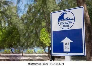 tsunami sign on the beach