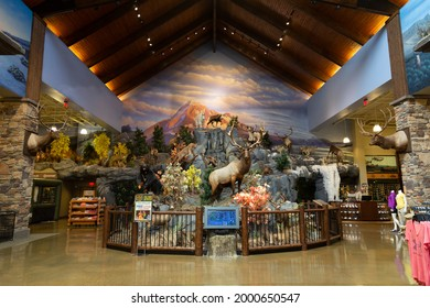 """""""Tualatin Oregon, USA - July 21, 2018: Interior view of Cabelas outdoor sports store sales floor, merchandise, and taxidermy displays """""""