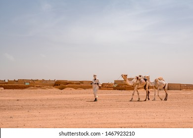 Tuareg man with his camels in Sahara desert in Agadez in Niger Africa 29 june 2019