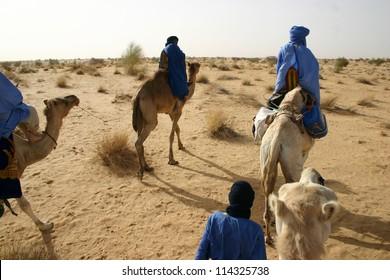 Tuareg nomads of the Berber tribe ride camels in the Sahara Desert of Mali, near Timbuktu