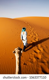 Tuarege with camel in the desert