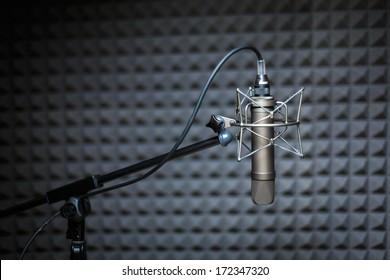 Tube microphone, professional microphone, recording studio