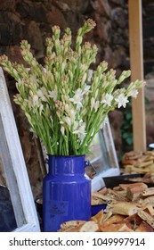 Tuberose flower decorating a brunch table