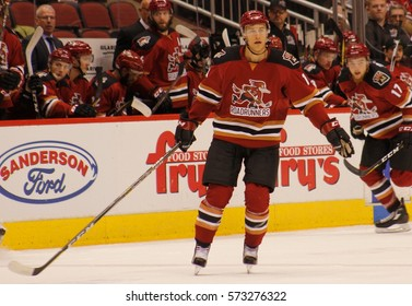 Tucson Roadrunners at Gila River arena in Glendale Arizona USA February 4,2017.