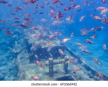tug Boat snorkel site     Curacao a small Caribbean Island in the Netherland Antilles