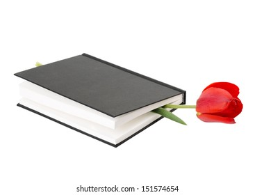 tulip flower book on a white background