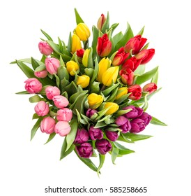 Tulip flower isolated on white background. Bouquet of fresh multicolor flowers. Easter decoration