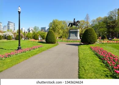Tulip season in Boston Public Garden