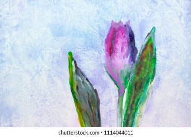 Tulip, watercolor, drawing by brush
