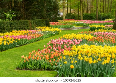 Flower Garden Background Images Stock Photos Vectors Shutterstock
