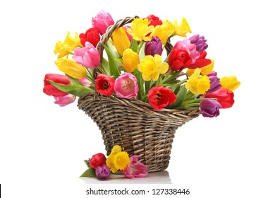 Tulips and daffodils in basket,isolated on white background.