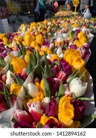 Tulips: Flowers Market (Groningen, Netherlands, 2019)