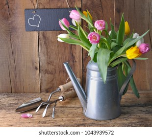tulips in a metal watering can with gardening tools and heart on a slate on wooden background