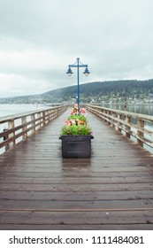 Tulips on the dock in Rock Point Spray Park in Port Moody, BC, Vancouver