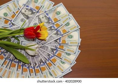 Tulips on dollars