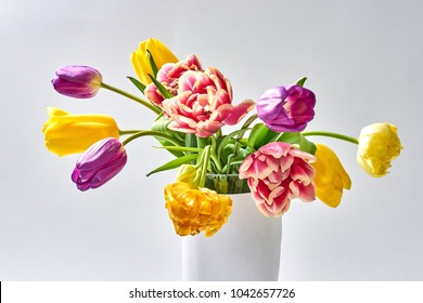 Tulips on a white background in a white vase
