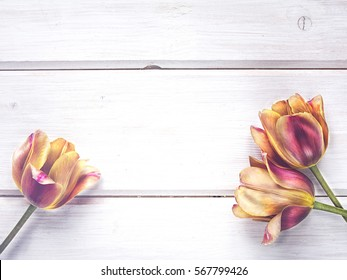 Tulips on a wood panels for mothers day, wedding invitation, greetings card and invitation cards, flowers background