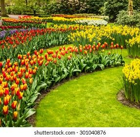 Tulips park Keukenhof, flower garden in Holland