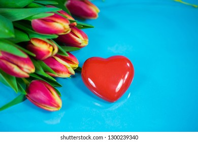 tulips with a red heart, blue background