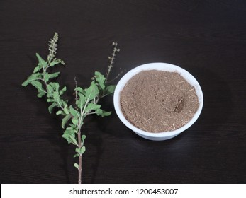 Tulsi or The Holy Basil flower with blurred leaves and Holi Basil Leaves Powder on Wooden Background,Tulsi Leaf Powder in White Bowl on Wooden Background,Holi Basil Leaf and Powder on Wooden,