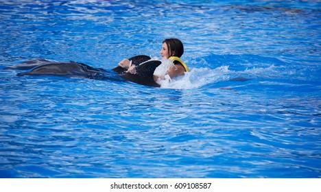 TULUM, MEXICO: DECEMBER 2, 2016: Tourist riding a dolphin during a dolphin show at Dolphinaris Tulum at Bahia Principe Hotel in Tulum Mexico.