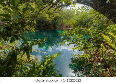 """Tulum, Mexico - May 15, 2019: A natural sink hole called """"Aktun-ha"""" or """"Carwash"""". Clouds are reflecting on the water of the natural pool surrounded by a thick and lush vegetation."""