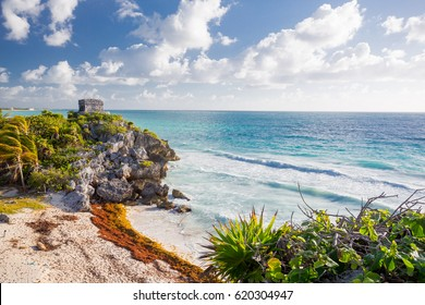 Tulum, Mexico. Turtle beach.