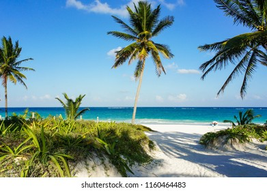 Tulum tropical beach with white sand and palm trees, Mexico.