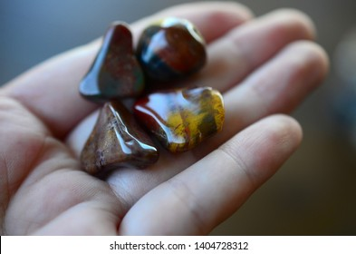 Tumbled petrified wood stones being held in woman's hand. Tumbled healing crystal, fossilized wood stone, in natural lighting macro photography. Low exposure photo of crystals.