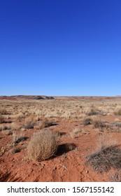 Tumbleweed with desert background in southwestern USA