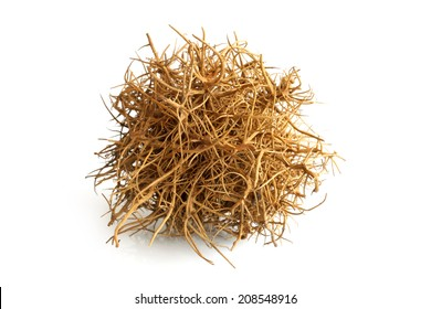 Tumbleweed on white background