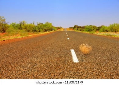 Tumbleweed rolling around the outback in Australia