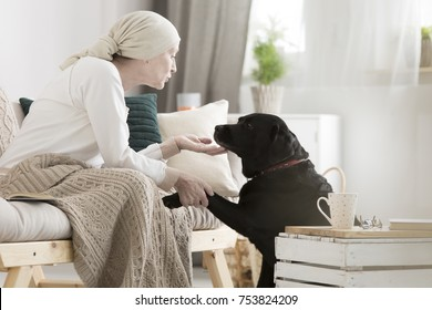 Tumor patient caressing her dog during pet therapy