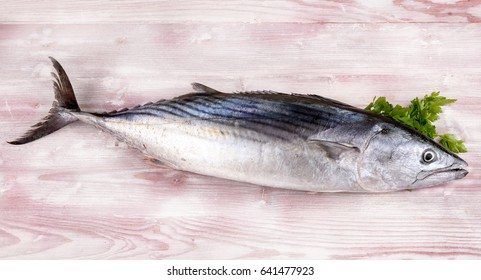 Tuna burnt on white table