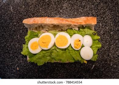 Tuna and egg sandwich