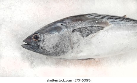 Tuna Fresh fish on ice for sale in the supermarket.