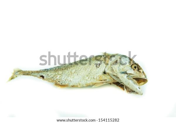 Tuna fried on white background