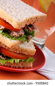 Tuna sandwich with tomato on orange background