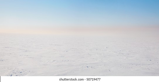 Tundra is an icy desert