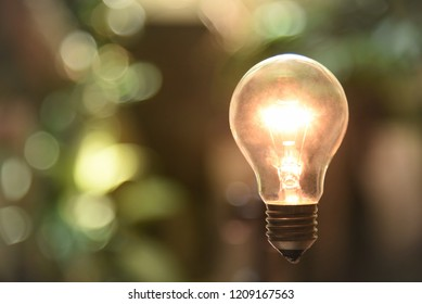 tungsten light bulb lit on garden background