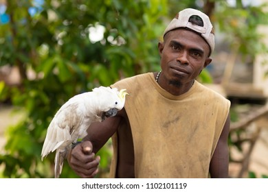 TUNGU VILLAGE, ARU ISLANDS, INDONESIA, DECEMBER 04, 2017 : Proud animal trainer is posing with his white Cockatoo standing on his arm in the Tungu village, Aru islands, Papua, Indonesia.