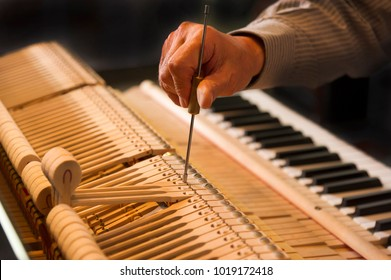 Tuning work of the piano