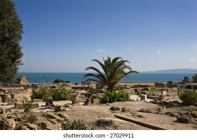 Tunisia. Ancient Carthage. Fragment of Archaeological Park. The Antonine Baths in background