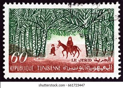TUNISIA - CIRCA 1959: A stamp printed in Tunisia shows Djerid, circa 1959.